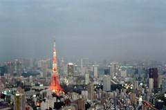 -1 (UME2nd) Tags: fujifilm japan natura classica