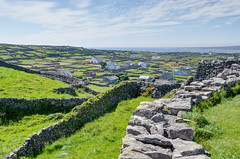 The houses, stone walls, and fields (Jonathan Palfrey) Tags: photo digital photomatix exposurefusion landscape stonewalls fields inisorr galway connacht ireland