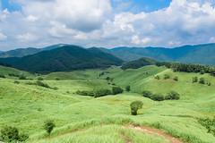 26Tonomine Highland (anglo10) Tags:    field japan