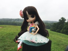 (Mina Mimosa) Tags: pop funko rainbowdash mylittlepony doll pullip fata byul