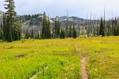 The trail to Upper Hazard Lake (Matthew Singer) Tags: idaho mountains payettenationalforest pollock unitedstates us