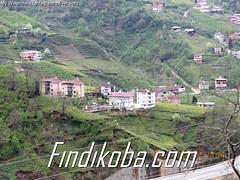 Saraçlıdan köy (11)
