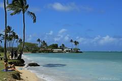 04172015_009_ (ALOHA de HAWAII) Tags: hawaii oahu kualoaregionalpark