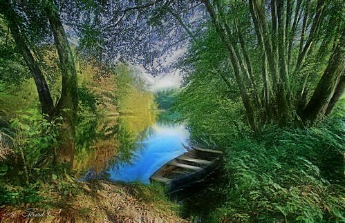 « Le spectacle de la nature est toujours beau. »  Aristote
