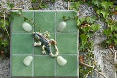 July 14, 2014 (Decoupage girl) Tags: tile lizard