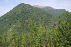 Monte Boglia (1516m) (sandorson) Tags: travel schweiz switzerland ticino suisse suiza svizzera lugano montebr  monteboglia svjc  sandorson