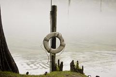 Foggy Morning (Richard Elzey) Tags: gulfofmexico water fog florida foggy elzey