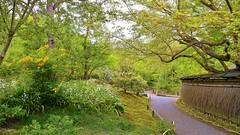 Kyoto  Saga Tenryu-ji  - Hougon-in (maco-nonchR(on/off)) Tags: river garden temple kyoto traditional buddhism arashiyama zen   kioto  tenryuji hogonin    allmanual  shishiunoniwa