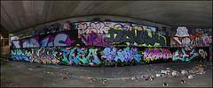 Various... (Alex Ellison) Tags: northlondon mhb urban graffiti graff halloffame hof ctr cityrollers flem virus lemon novis htb slam tbf thebufffails atom alma sone eps plea boobs