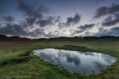 Terschelling, the Netherlands (Lex Vermeend Photo's) Tags: sunset nature water netherlands terschelling sunrise waddeneiland nederland wolken wad nederlands staatsbosbeheer boschplaat