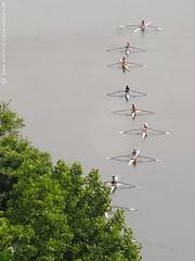 Waiting to row (photodesignette) Tags: ruhr rudern wettbewerb ruderer