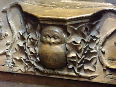 St David's Cathedral, Pembrokeshire (Sheepdog Rex) Tags: owls misericords stdavidscathedral