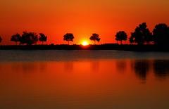 Sunrise (Circled Thrice) Tags: morning trees orange sun lake reflection water sunshine silhouette sunrise canon landscape eos rebel pond colorado glow horizon sigma co goldenhour wetland t3i commercecity