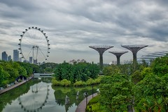 Gardens by the Bay with Super Trees and Flower Dome and Singapore Flyer ferris wheel in Singapore (UweBKK ( 77 on )) Tags: city urban plants flower reflection tree green nature water wheel clouds garden bay flyer flora singapore asia sony ferris super dome southeast alpha dslr 77 slt gardensbythebay