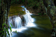 Waterfall in Mexico  (T.ye) Tags: landscape forest rain tree plant todd ye perspective green waterfall  long exposure