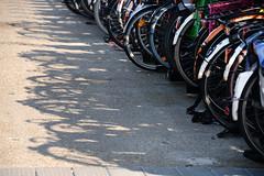 Bike park (Mel s away) Tags: amsterdam netherlands  bike parkparking transportation