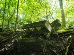 End of the Line (Feldore) Tags: old trees england green english abandoned station forest train concrete track yorkshire railway olympus line blocks mchugh em1 menston 1240mm feldore