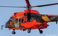 Orange Cougar (Ignacio Ferre) Tags: airplane nikon aircraft aviation military helicopter cougar avin helicptero eurocopter spanisharmy as532al eurocopteras532alcougar