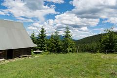 DSC_2492 (czargor) Tags: mountains landscape hill mountainside beskidy inthemountain dogtrekking beskidzywiecki