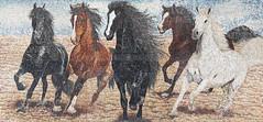 Title : Spirit of Freedom. Size : 3M x 140CM Material : magazine paper-collage #saramoudarres #paperart #collageart #artgallery  #horses #arabianhorses (sara al moudarres) Tags: horses paperart artgallery collageart arabianhorses saramoudarres