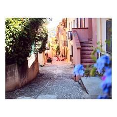 (tifanm_laurent) Tags: kids street colors couleurs rue jeux enfants photoderue pyrnesorientales france collioure