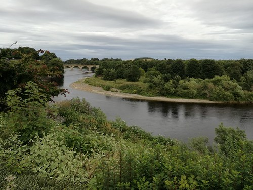 River Tweed at Coldstream, August 2016