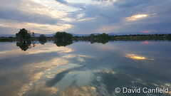 August 1, 2016 - Reflections on Broomfield's McKay Lake. (David Canfield)
