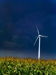 Dark (plethora4834) Tags: windturbine field sky clouds dark corn