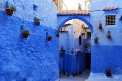 Chefchaouen Streets (Photographing_The_World) Tags: morocco marokk travel travelphotography arabic africa muslimcountry culture wanderlust explore people northafrica moroccan moroccanculture moroccancolors moroccancolours moroccanpeople africanpeople discovermorocco exploremorocco marrakesh marrakech fes fez agadir asilah essaouira merzouga sahara maroc chefchaouen colors travelphotos arabicculture arabicpeople travelblog muslimpeople muslimculture diversity multicultural locals locallife moroccanlifestyle moroccanlife streets shades blueshades shadesofblue