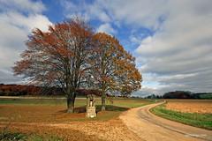 Villy la Fert (xplorengo) Tags: automne autumn herfst herbst colorful colors chapel chapelle ardennes ardennen france trees tree road