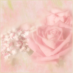 Happy  weekend. (BirgittaSjostedt) Tags: rose romantic pink texture photoborder beauty art unique simple macro birgittasjostedt ie pastel