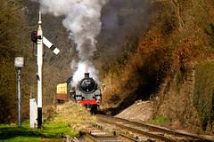 75029 THE GREEN KNIGHT (M Tyson) Tags: england green heritage train track unitedkingdom yorkshire transport railway historic steam knight goathland nymr northyorkshiremoors darnholme 75029 thegreenknight