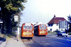 Slide 028-00 (Steve Guess) Tags: uk red england bus london transport surrey gb iv regal rf esher mcw aec elmbridge