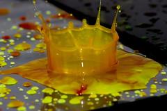 _MG_5781 (Arthur Pontes) Tags: color water gua gum hit waterdrop impact gota splash liquid colorido impacto pingo lquido densidade xanthan xantana gomaxantana xanthangum corriewhitebook densidadedagua
