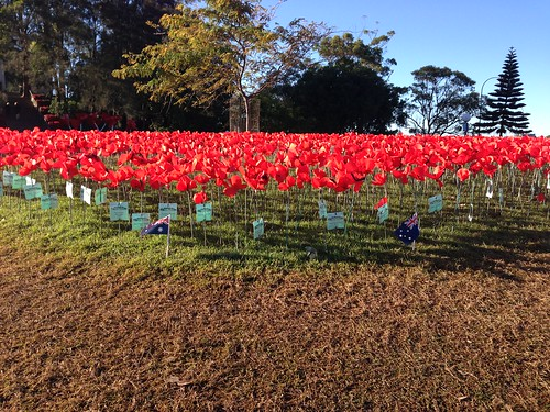 Memorial Park Gosford, 2015 Poppy Project
