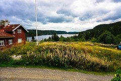 Hakloavannet (bigflabba) Tags: summer green oslo norway clouds landscape norge view outdoor hiking sony lush nordmarka a6000 sonya6000