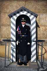 DSC_0214 (jp.clement12) Tags: bridge urban booth republic czech prague military guard praha pont fontain fontaine urbain gardien