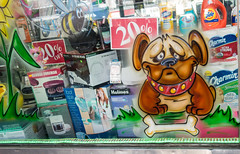 Poor Dog (UrbanphotoZ) Tags: nyc newyorkcity dog ny newyork sad sensitive manhattan tide bee upperwestside bone drugstore windowdisplay holmes georgeforeman charmin clorox footspa 20off ultrastrong iqsound
