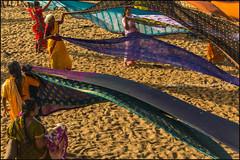 Saris 2.    Kanyakumari (Claire Pismont) Tags: inde india indedusud indian kanyakumari beach sari pismont clairepismont travel travelphotography travelshot documentory