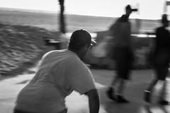 @IMG_4471 (bruce hull) Tags: sanfrancisco california aquarium coast highway chinatown pacific wharf whales coit emabacadero