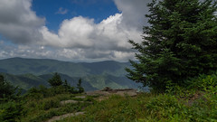 Mt. Craig Summit, Mt. Mitchell State Park, North Carolina (netbros) Tags: northcarolina mtcraig mtmitchellstatepark netbros internetbrothers pointmisery littlebuttknob bigbuttknob