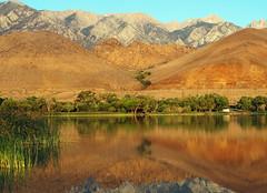 Lone Camper, Diaz Lake, Sierra Nevada, CA 6-16 (inkknife_2000 (6.5 million views +)) Tags: california reflection sunrise reeds stillwater mtwhitney sierranevada firstlight newday waterreflections lakediaz tallestpeakinusa volcanicmounds