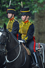 London Trooping of the Colour 2016 (pg tips2) Tags: equestrian 2016 london horses horse troops