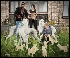 Playing with the dogs (Erika Madazzhatter) Tags: cindystarostin mark mighty frindy