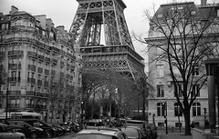 Tour Eiffel (Amelien (Fr)) Tags: leica blackandwhite bw film monochrome analog 50mm noiretblanc 11 nb 400 epson mp pushed rodinal fp4 amg argentique 1100 v550 125 2016 pellicule standdevelopment filmisnotdead r09 homescanned msoptical believeinfilm sonnetar capturedonrealfilm