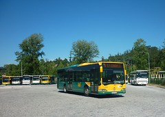 V.N.Famalicão TUF 5004 (busfan3) Tags: transportes urbanos famalicão arriva portugal mercedes benz citaro bus buses autocarro autocarros omnibussen autobus autobuses onibus bussen