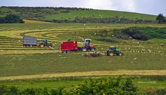 (Zak355) Tags: rothesay isleofbute bute scotland scottish tractors farming farm silage johndeere masseyferguson