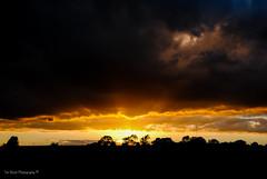 DSC_0209 (timmie_winch) Tags: nikon nikond3000 d3000 august august2016 2016 sun sunset sunsetsuffolk sunsetoversuffolkcountryside sunsetovercornfields sunsetovercornfield silhouette 18105mm 18105vr nikon18105mmvrlens shadows golden goldenhour goldenlight elliedunn ellie eleanordunn ells eleanor ellsdunn dunn landscape landscapephotography landscapephotographer naturephotographer naturephotography nature timwinchphotography tim timwinch winch debenham ip14 suffolk