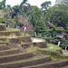 Rizières, Bali