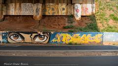 _DSC5979 (Mario C Bucci) Tags: saida fotografia pacheco paulo tellis mario bucci hugo shiraga fabio sideny roland grafites volu ii
